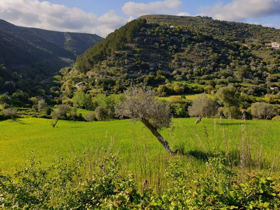 The upside down hill: Cava Misericordia trekking tour